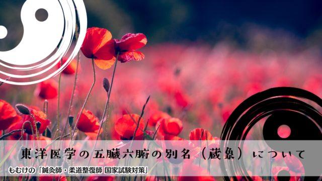 タイトル「東洋医学の五臓六腑の別名(蔵象)について」