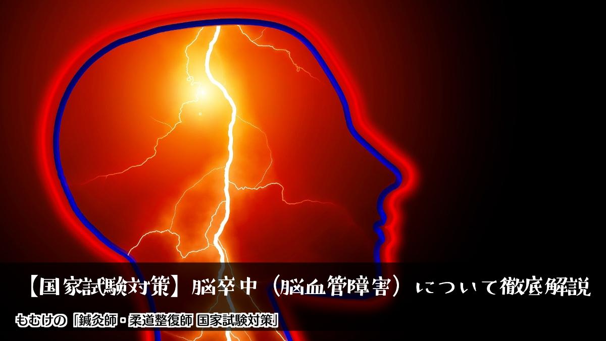 【国家試験対策】脳卒中(脳血管障害)について徹底解説