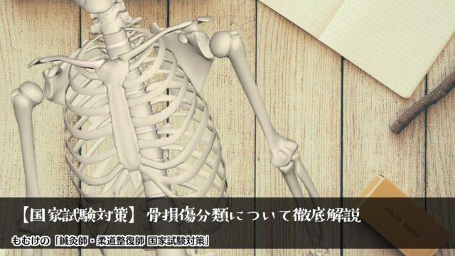 【国家試験対策】柔道整復学の基本!ゴロで覚える骨損傷分類について徹底解説